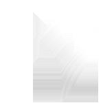 Vigier logo